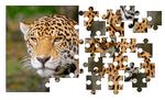 без фона Jigsaw Puzzle (Копировать)